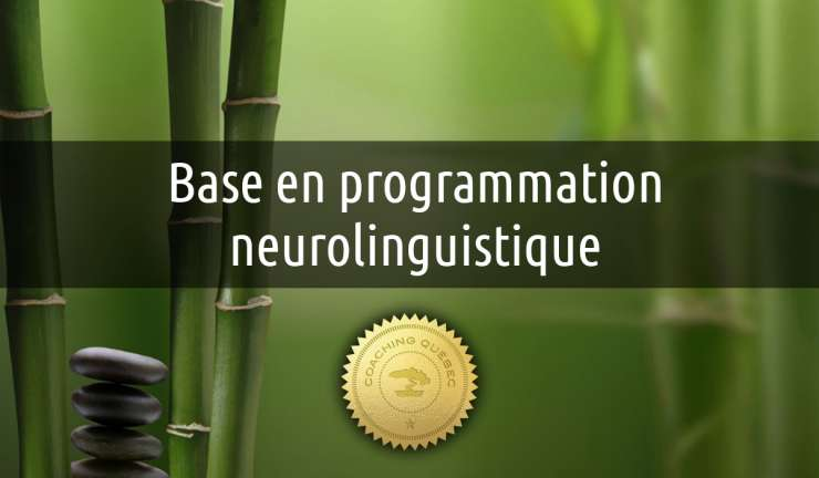 Formation de Base en PNL